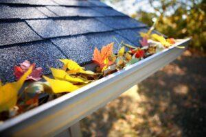 gutter with autumn leaves